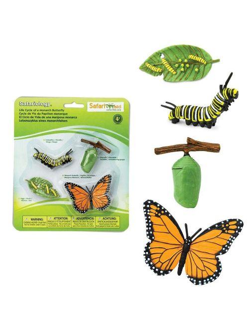 Ciclul vieții la fluturele monarh - Safari Ltd.